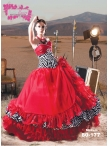 Discount Wholesale Ball Gown Quinceanera Dress AP80-177
