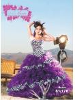 Discount Wholesale Ball Gown Quinceanera Dress AP81-178