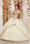 Discount Glamorous Floor Length Ball Gowns Long Sleeves Champagne Quince Ball Gowns Lace Up